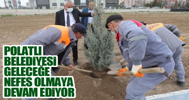 Fikret Sururi Evirgen Parkı ve Yürüyüş Yolu'nda 150 adet ağacı toprakla buluştu