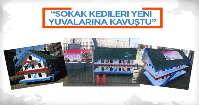 Polatlı Belediyesi Kedi Oteli Necip Fazıl Parkı'nda yerini aldı!