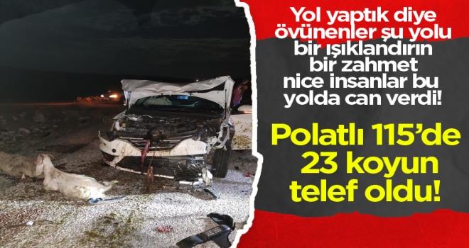 Polatlı'da 23 koyun telef oldu