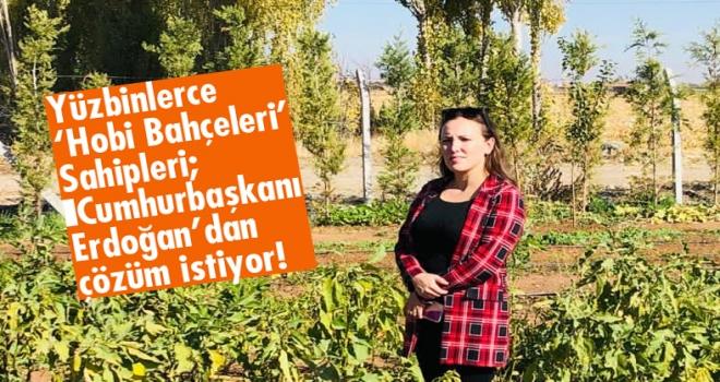 'Yüzbinlerce 'Hobi Bahçeleri' Sahipleri; Cumhurbaşkanı Erdoğan'dan çözüm istiyor'