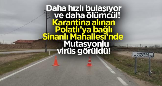 Son dakika: Polatlı'da Mutasyonlu Virüs Paniği!