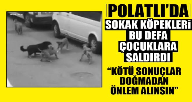 Polatlı'da sokak köpekleri bu defa çocuklara saldırdı!