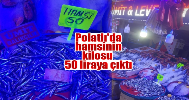 Polatlı'da hamsinin kilosu 50 liraya çıktı