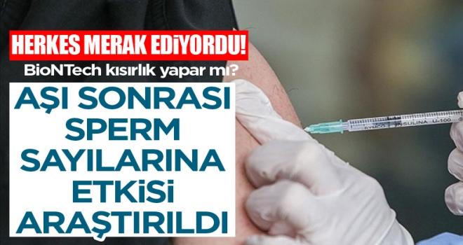 Koronavirüs aşılarının kısırlığa yol açmadığı kanıtlandı
