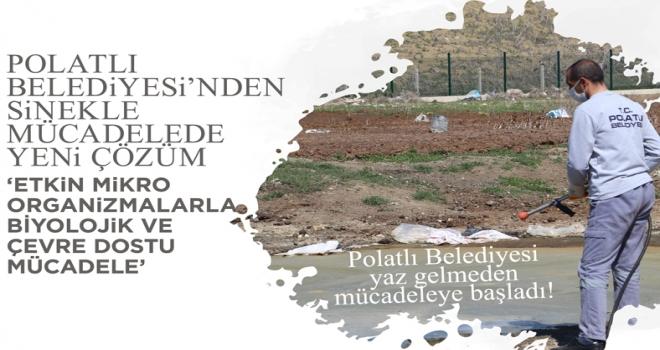 Polatlı Belediyesi'nden sinekle mücadelede yeni çözüm
