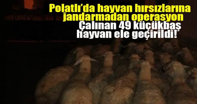 Polatlı'da hayvan hırsızlarına operasyon